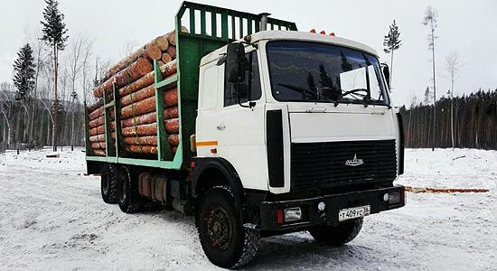 МАЗ-6303 (лесовоз) на IronHorse.ru ©